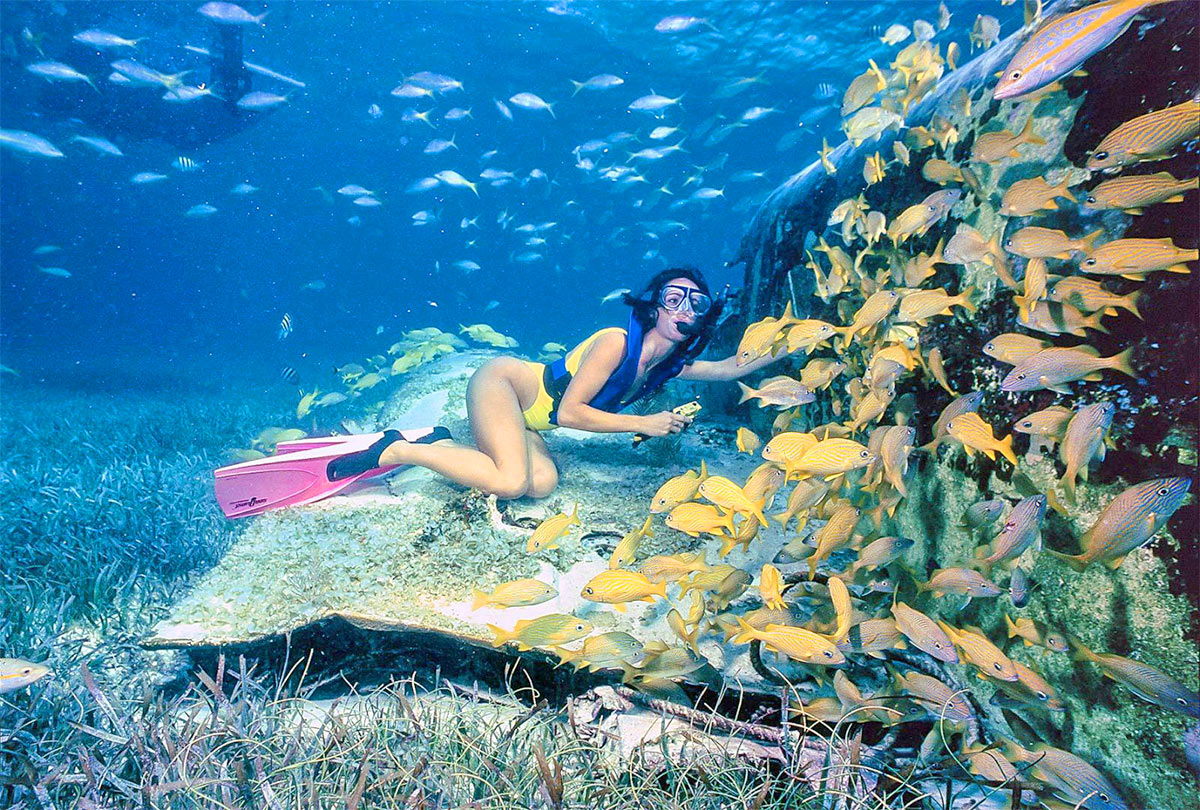 shipwreck snorkeling
