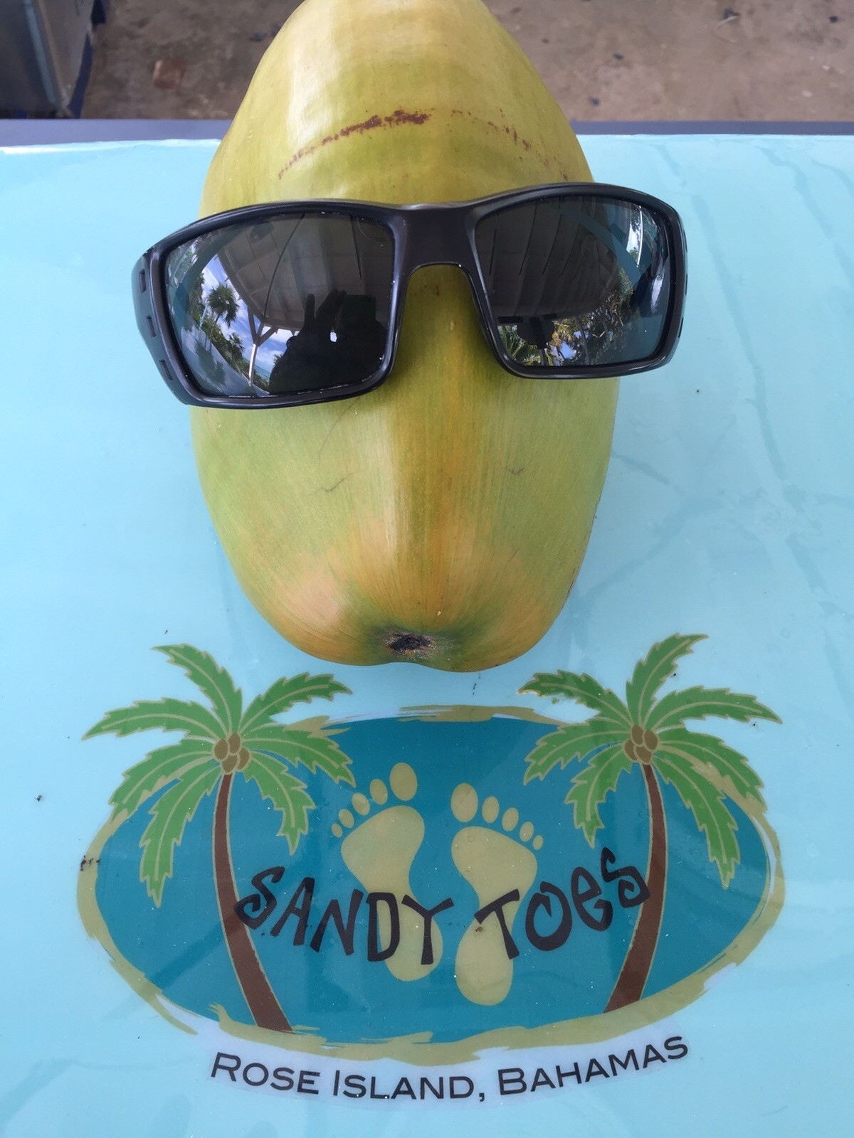 Coco the Coconut